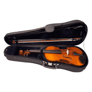 RSV Signature Model Violin Outfit